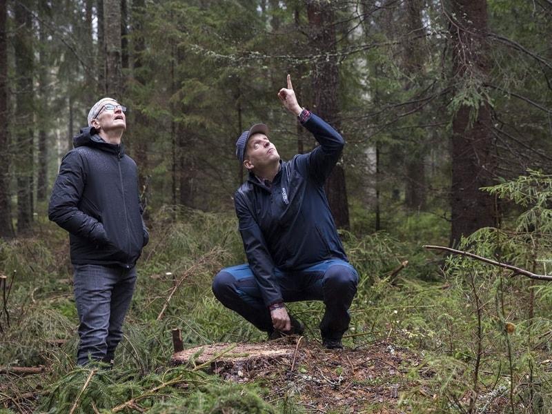 Tim Cook  se balade en forêt